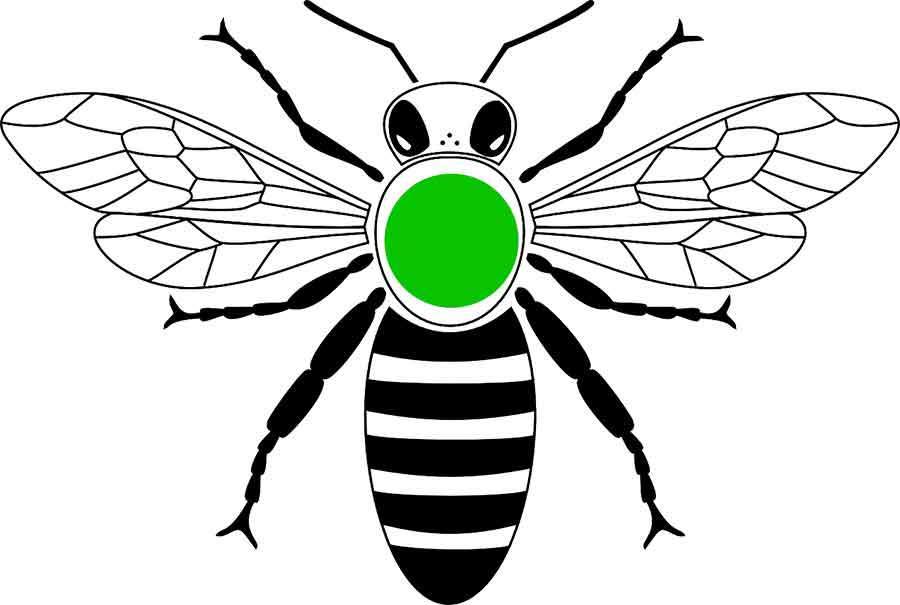 Jahresfarbe der Bienenkönigin