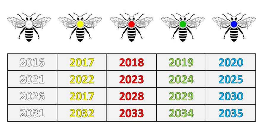 Jahresfarben der Bienenköniginnen